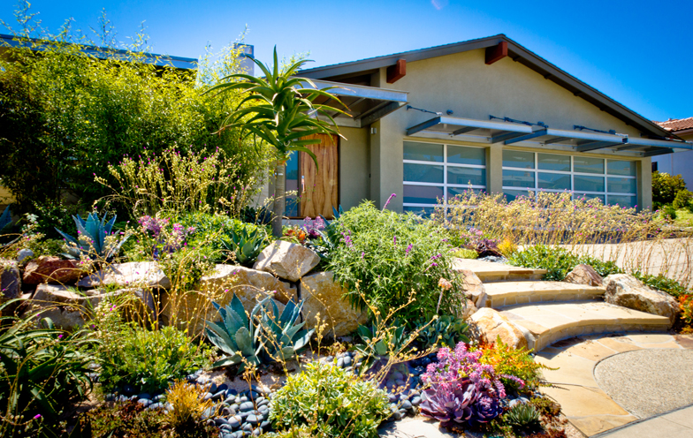 Xeriscape landscaping san diego ca eco friendly landscapes for Backyard landscaping ideas san diego